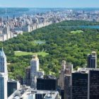 Olmsted's and Vaux's Central Park image credit: Manamana / shutterstock.com